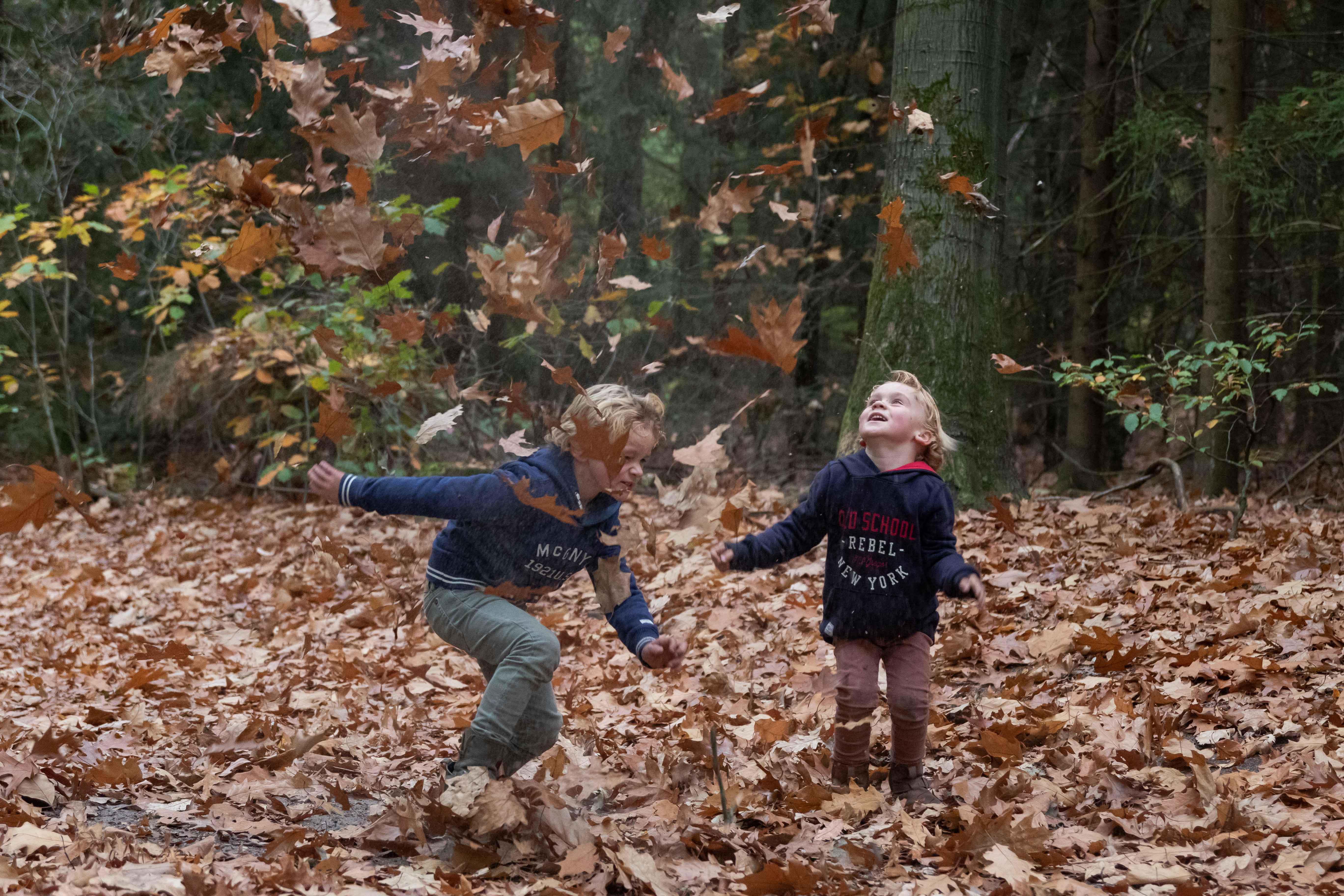 Marleen Verheul Fotografie, Kinderfotografie, 2 broertjes met bladeren gooien in het bos