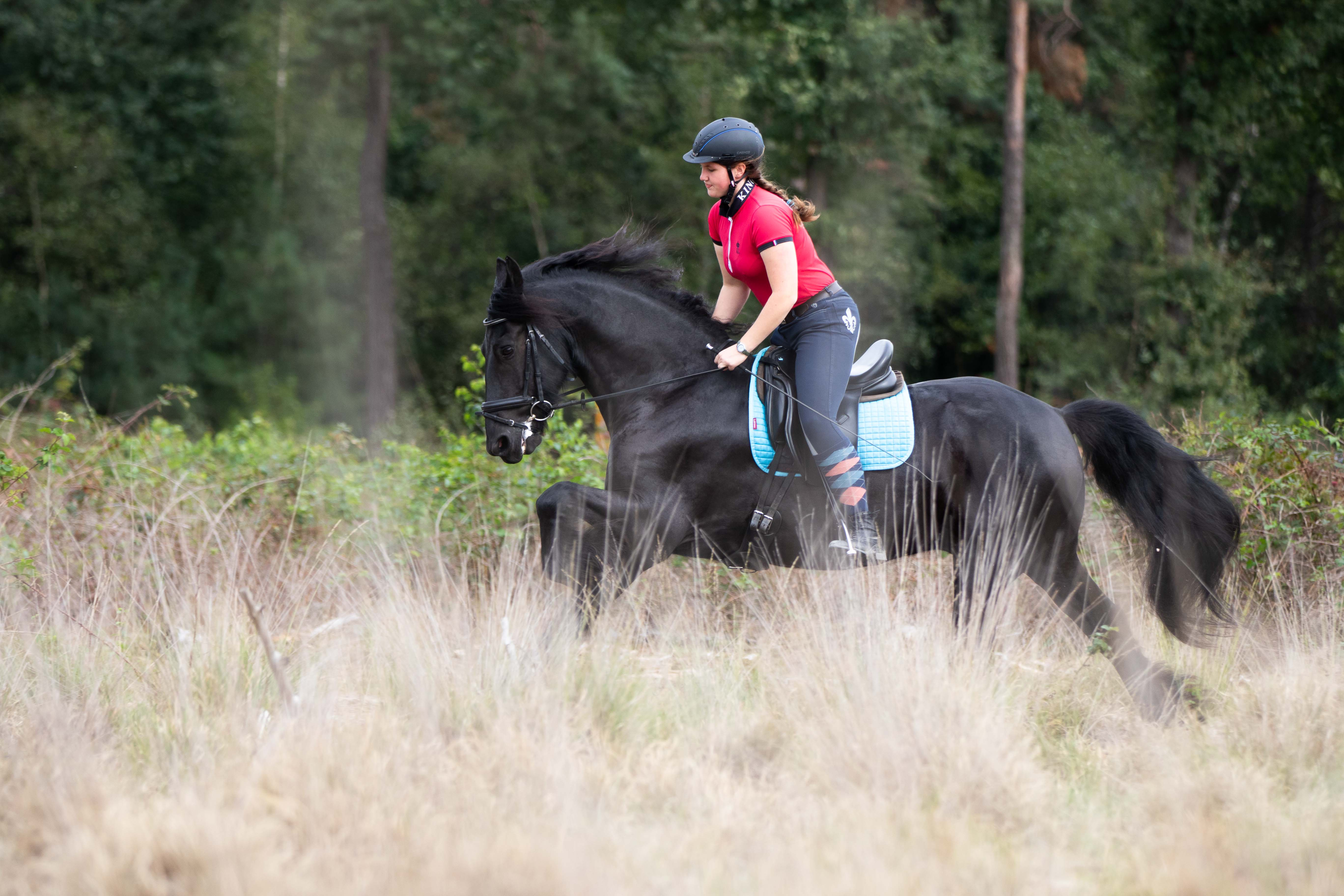 Marleen Verheul Fotografie, dierenfotografie, paardenfotografie, dierenfotograaf, Fries paard met ruiter galopperend door het bos