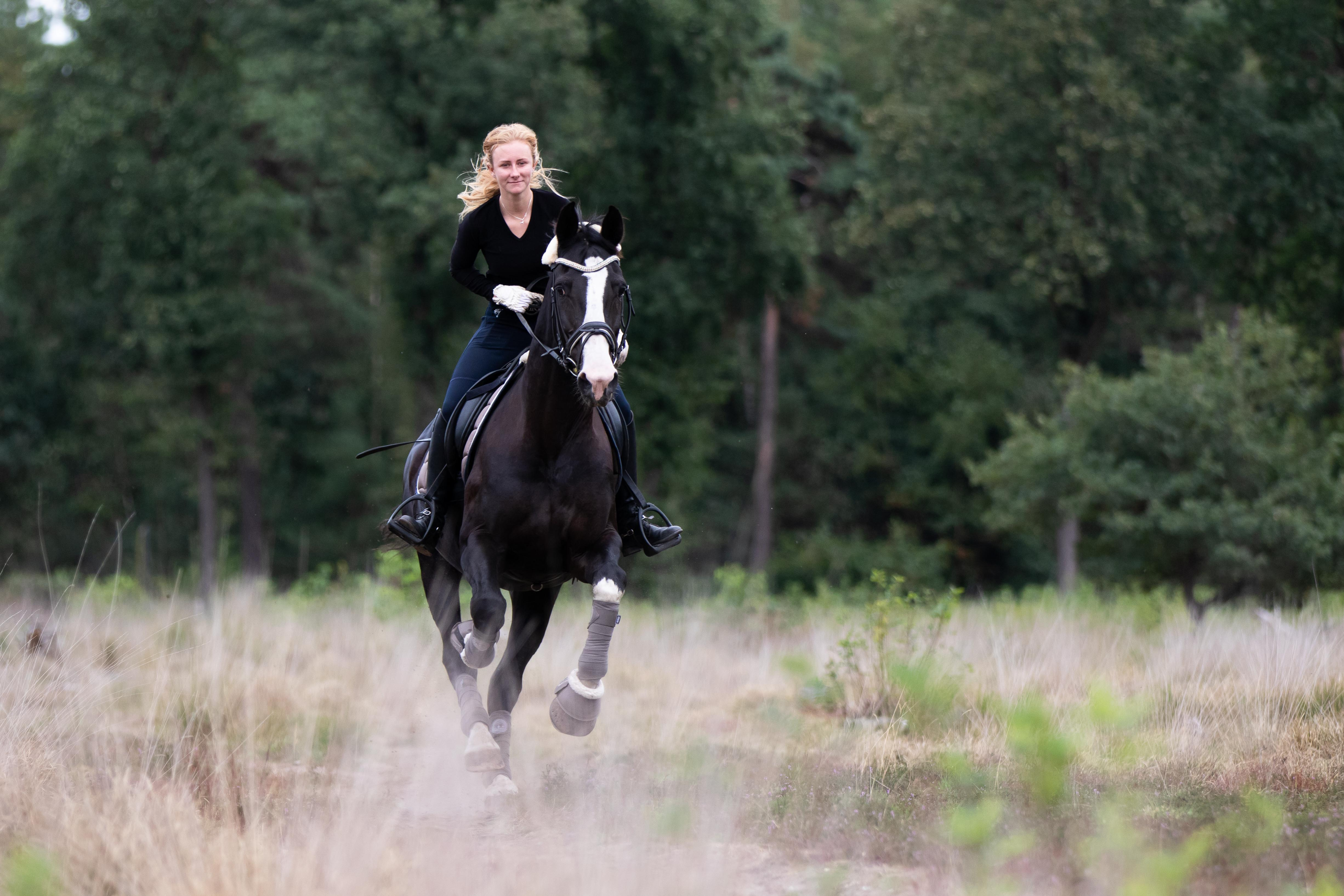 Marleen Verheul Fotografie, dierenfotografie, paardenfotografie, dierenfotograaf, paard en ruiter galopperend in het bos