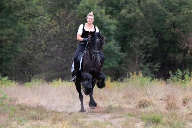 Marleen Verheul Fotografie, dierenfotografie, dierenfotograaf, Fries paard met ruiter galopperend in het bos