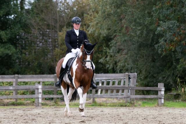 Marleen Verheul Fotografie, dierenfotografie, dierenfotograaf, paardenfotografie, wedstrijdpaard tijdens een wedstrijd