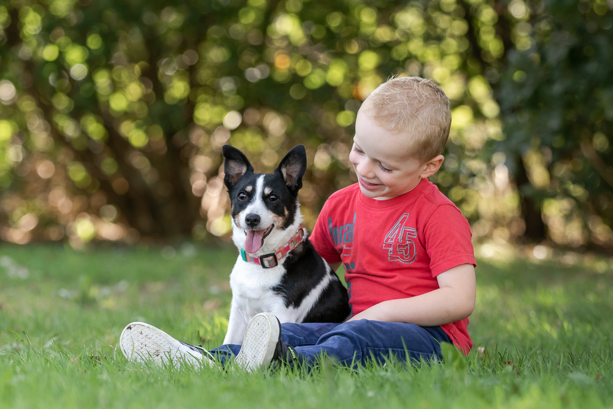 Marleen Verheul Fotografie-hondenfotografie-jack russell